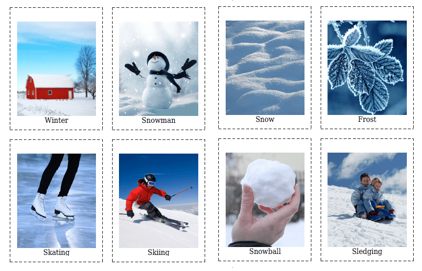 20 Winter Flashcards